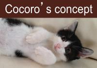 Cocoro's concept
